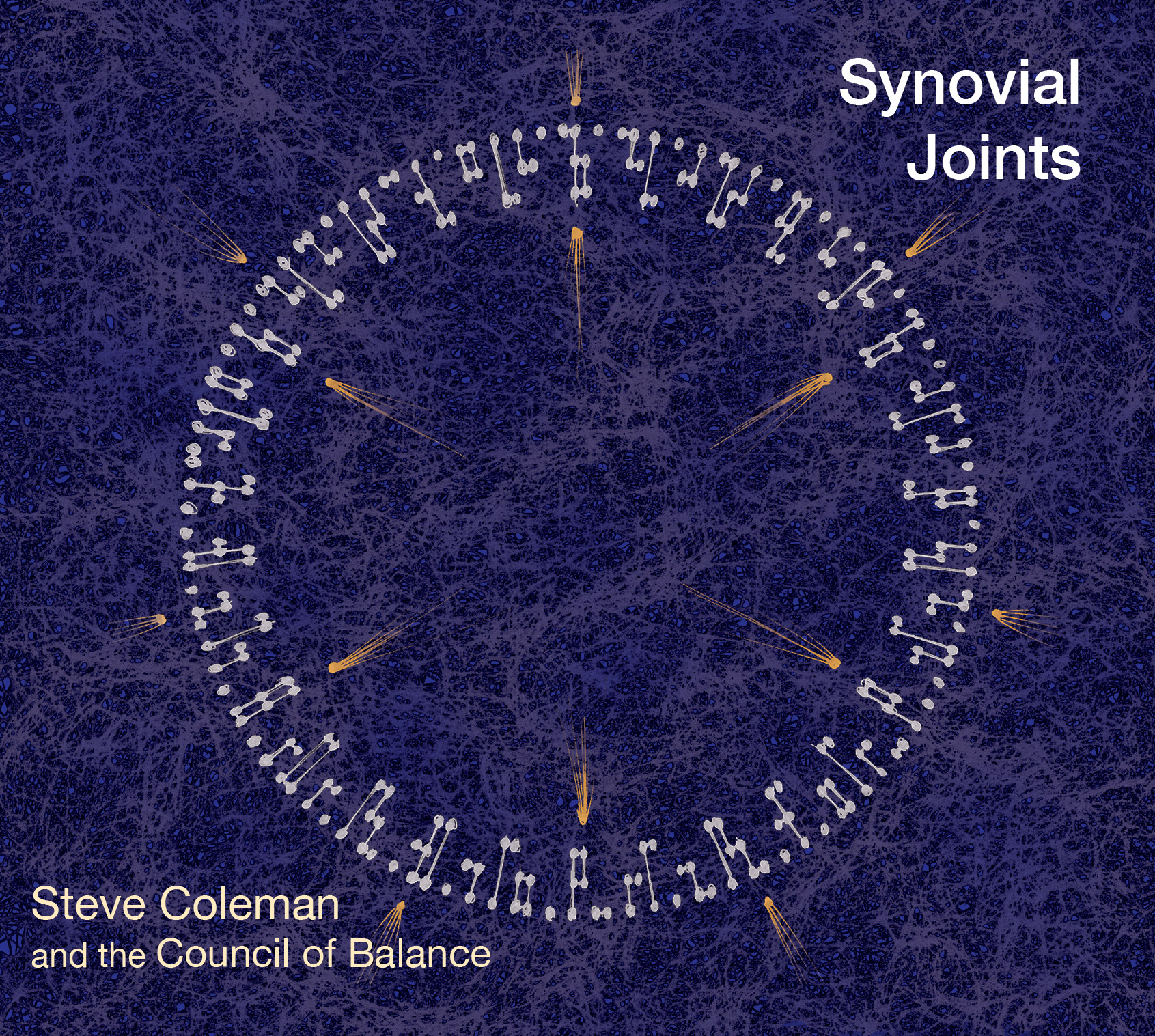 Steve Coleman and the Council of Balance - Synovial Joints